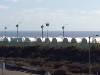 Holtec casks awaiting spent nuclear fuel at San Onofre. The stainless steel casks are covered in white tarps to prevent the rust from corrosive salt-infused air. Photo taken 01/21/16